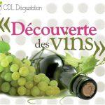 Découverte des Vins
